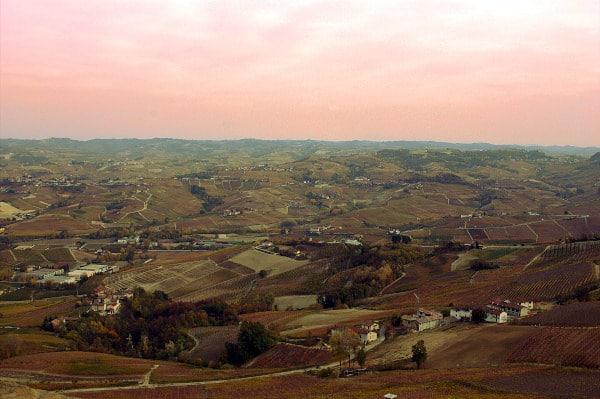 Cosa vedere a La Morra-Belvedere-panorama-Langhe-Viti