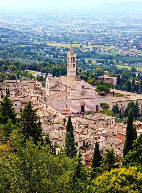 Basilica di Santa Chiara-Panorama-