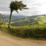 paesi più sostenibili del mondo-costa rica-paesaggio-albero-verde-jpg