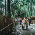 Giappone-natura-foresta-verde-persone-jpg