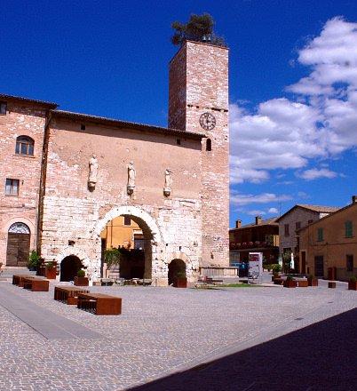 Porta Consolare-Umbria-pietra rosa-Ulivo