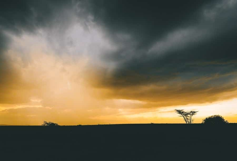Chi sono i griot del Senegal che ci portano alla sua scoperta