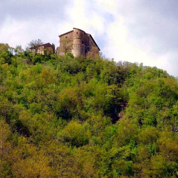 Rocca di aries- Anello di Montone- Valle del Carpina- alberi-fortezza
