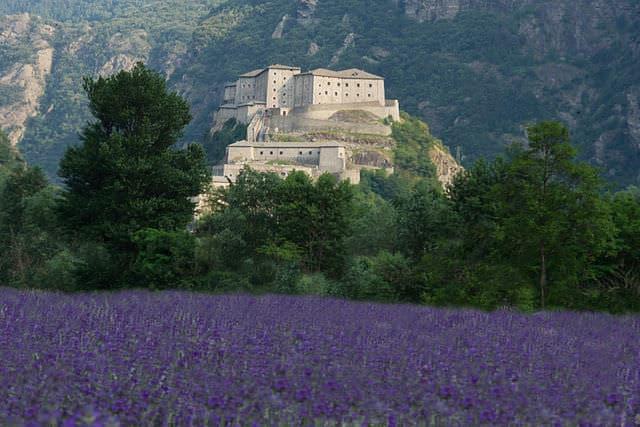 Forte di Bard- Fortezza-montagna- fiori viola