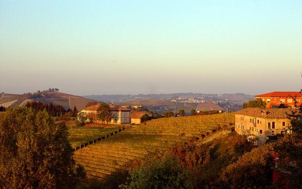 Cosa vedere a Neive e dintorni- panorama-Langhe-vitigni