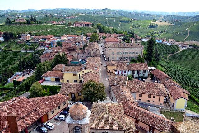 Barbaresco-Torre medievale- panorama