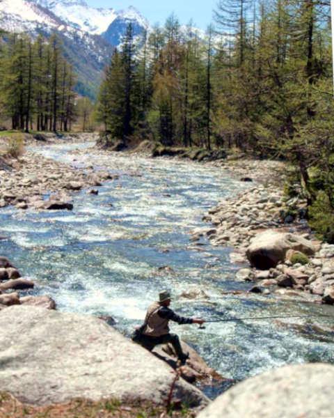 Val Veny- Dora di Veny- Torrente- Monte Bianco- Courmayeur- pescatore alberi