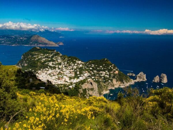 Fioritura delle fresie-Capri-Valle Cetrella-